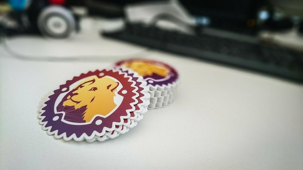lyon stickers photo